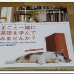 癒されながら英語を学べる本を眺めています