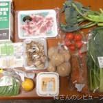 Oisix(おいしっくす)おためしセット レポート 野菜っておいしい!