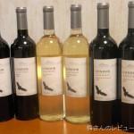 コンドール・アンディーノ品種飲み比べ4種6本セット 白ワイン編