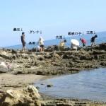 1週間、九州の夏を満喫してきました