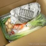 良菜健暮の好みをきいてくれる野菜セットが到着